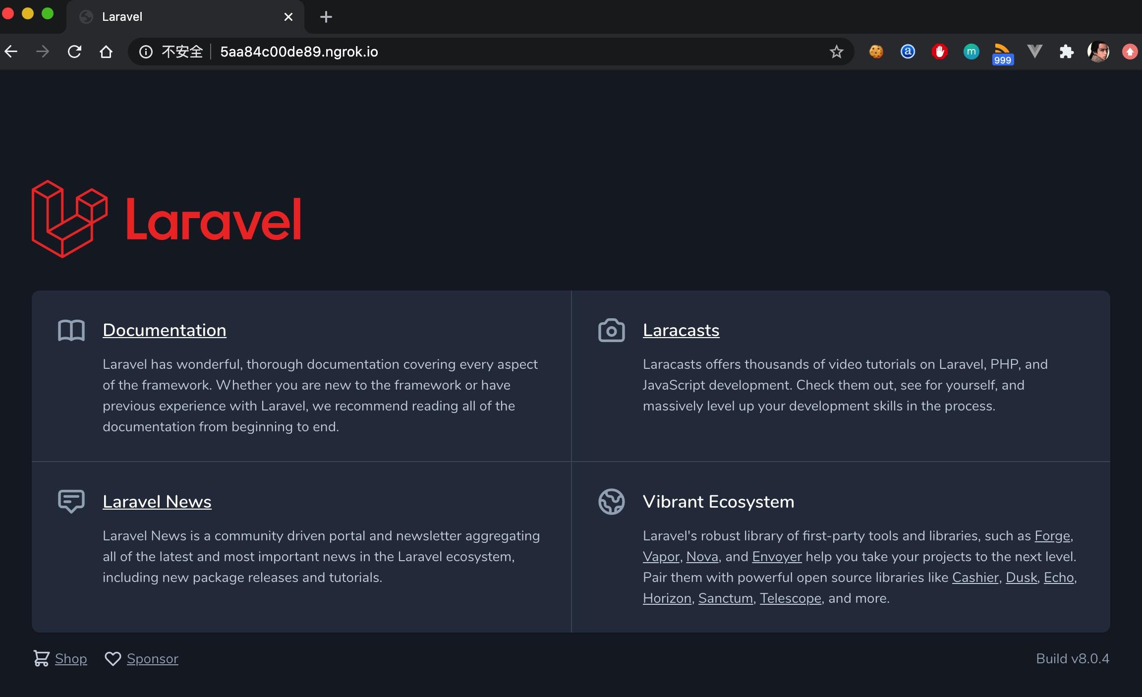 访问通过 Ngrok 分享的 Laravel 站点