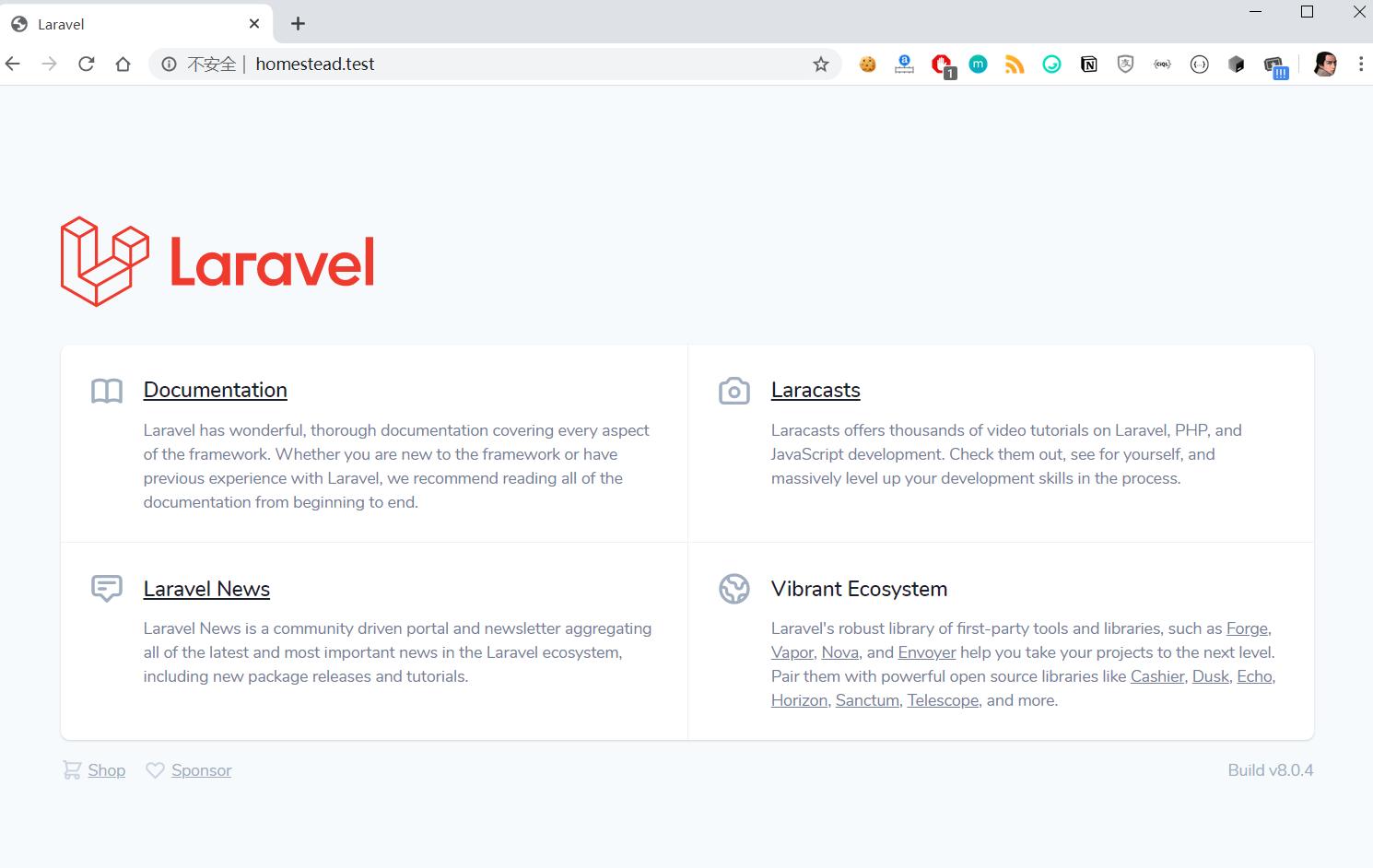 访问部署在 Homestead 中的 Laravel 项目