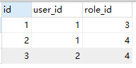 中间表role_user